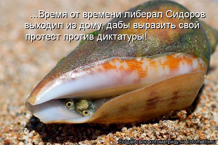 Котоматрица: ...Время от времени либерал Сидоров выходил из дому, дабы выразить свой  протест против диктатуры!