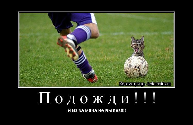 Котоматрица: Подожди!!! Я из за мяча не вылез!!!!