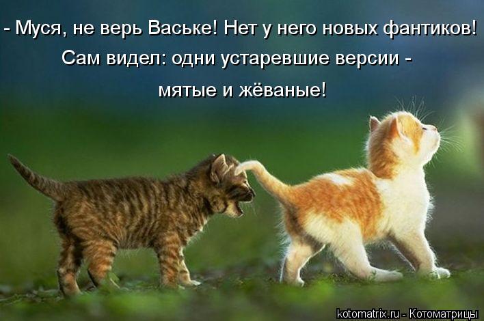 Котоматрица: - Муся, не верь Ваське! Нет у него новых фантиков! Сам видел: одни устаревшие версии - мятые и жёваные!