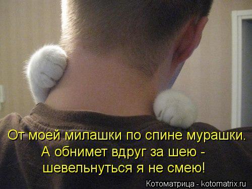 Котоматрица: От моей милашки по спине мурашки. А обнимет вдруг за шею -  шевельнуться я не смею!