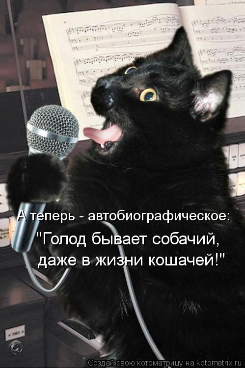 """Котоматрица: """"Голод бывает собачий, даже в жизни кошачей!"""" А теперь - автобиографическое:"""