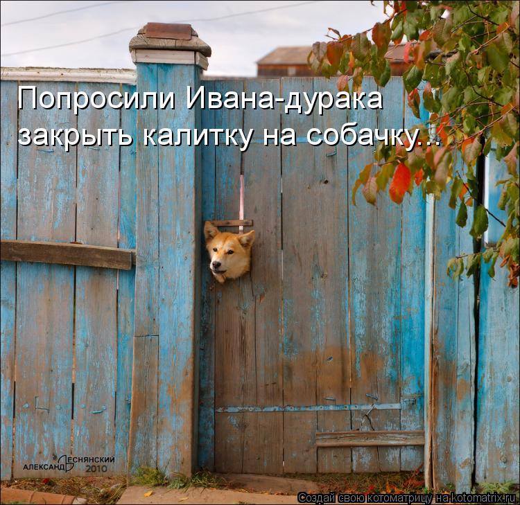Котоматрица: Попросили Ивана-дурака закрыть калитку на собачку...