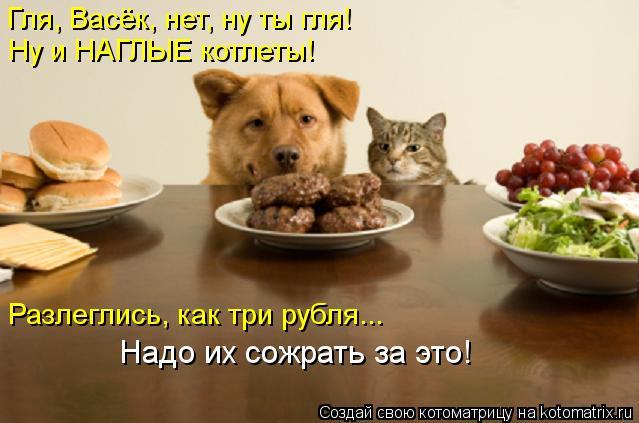 Котоматрица: Гля, Васёк, нет, ну ты гля! Ну и НАГЛЫЕ котлеты! Разлеглись, как три рубля... Надо их сожрать за это!