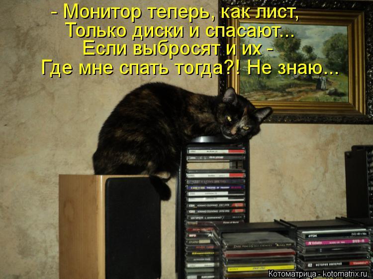 Котоматрица: - Монитор теперь, как лист, Только диски и спасают... Если выбросят и их -  Где мне спать тогда?! Не знаю...