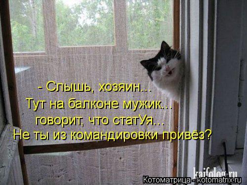 Котоматрица: - Слышь, хозяин... Тут на балконе мужик... говорит, что статУя... Не ты из командировки привёз?