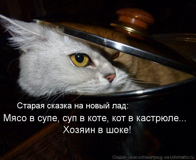 Котоматрица: Старая сказка на новый лад: Мясо в супе, суп в коте, кот в кастрюле... Хозяин в шоке!