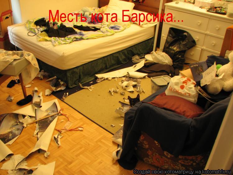 Котоматрица: Месть кота Барсика...