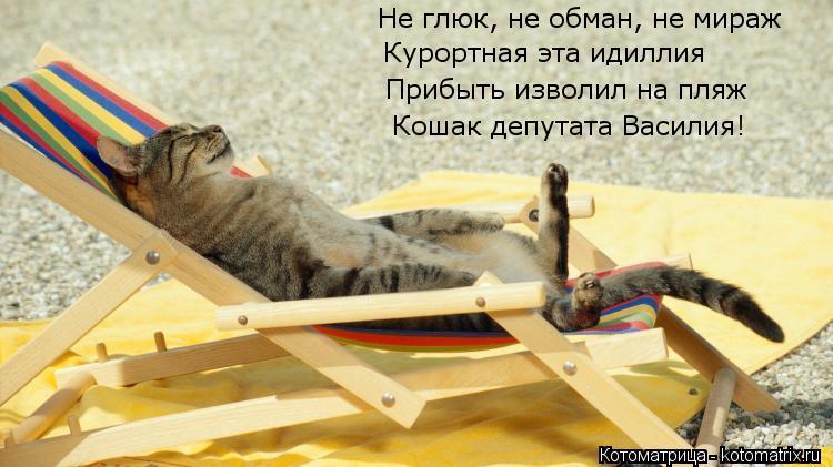 Котоматрица: Не глюк, не обман, не мираж Курортная эта идиллия Прибыть изволил на пляж Кошак депутата Василия!