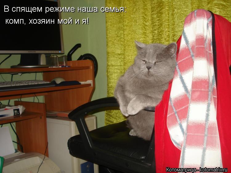 Котоматрица: В спящем режиме наша семья: комп, хозяин мой и я!