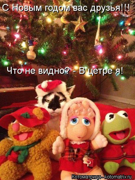 Котоматрица: С Новым годом вас друзья!!! Что не видно? - В цетре я!