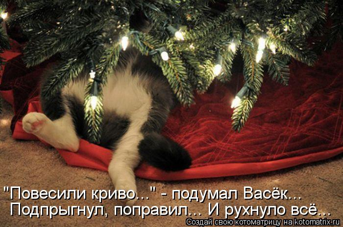 http://kotomatrix.ru/images/lolz/2012/12/26/kotomatritsa_mrd.jpg