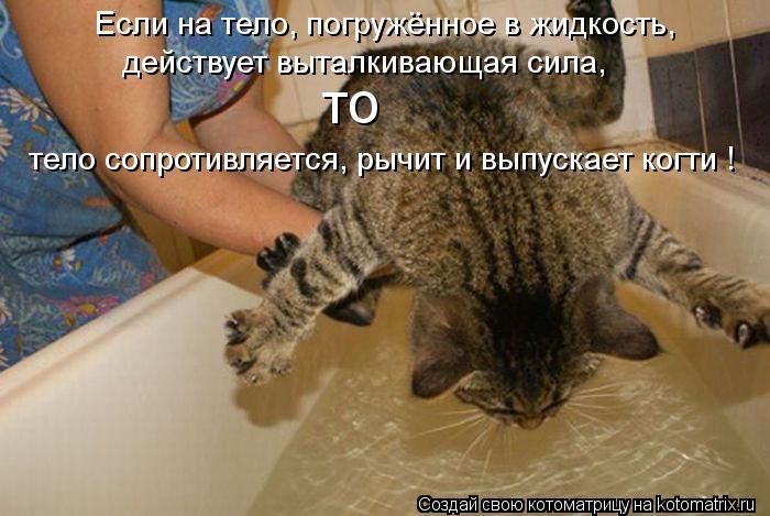 Котоматрица: Если на тело, погружённое в жидкость, действует выталкивающая сила,  то тело сопротивляется, рычит и выпускает когти !