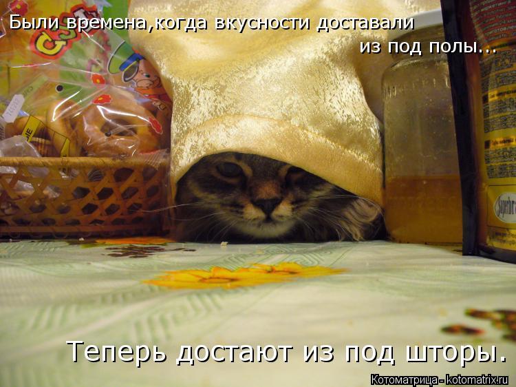Котоматрица: Были времена,когда вкусности доставали из под полы... Теперь достают из под шторы.