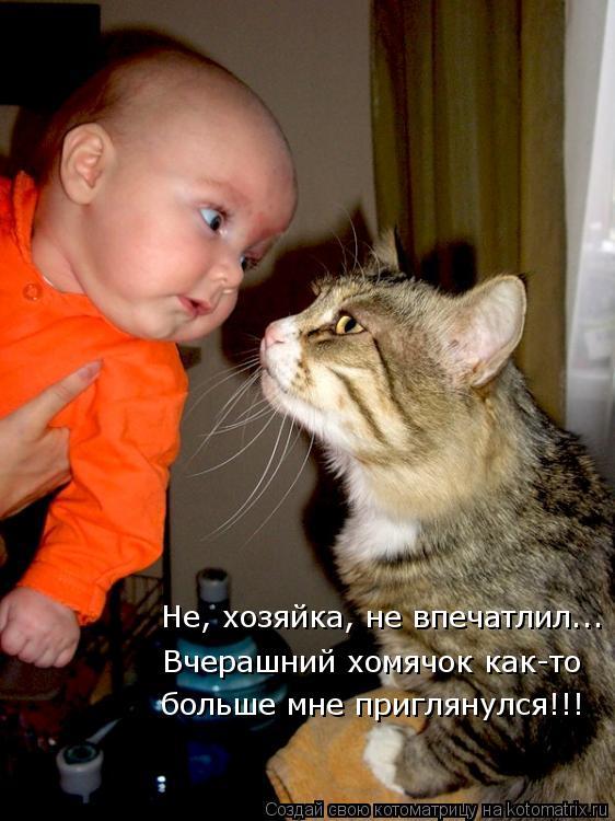 http://kotomatrix.ru/images/lolz/2012/12/29/kotomatritsa_5x.jpg