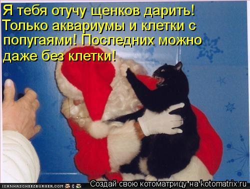 Котоматрица: Я тебя отучу щенков дарить! Только аквариумы и клетки с  попугаями! Последних можно даже без клетки!