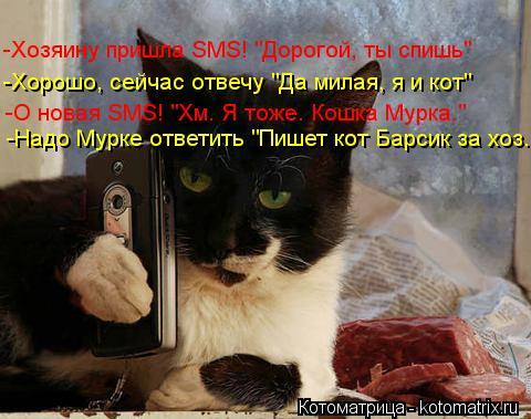 """Котоматрица: Тититинь! -Хозяину пришла SMS! """"Дорогой, ты спишь"""" -Хорошо, сейчас отвечу """"Да милая, я и кот"""" -О новая SMS! """"Хм. Я тоже. Кошка Мурка."""" -Надо Мурке ответ"""