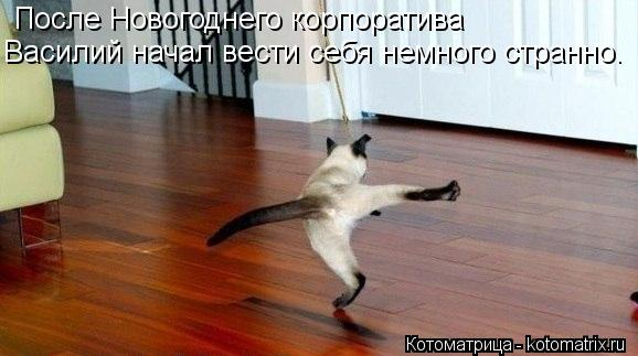 Котоматрица: После Новогоднего корпоратива Василий начал вести себя немного странно.