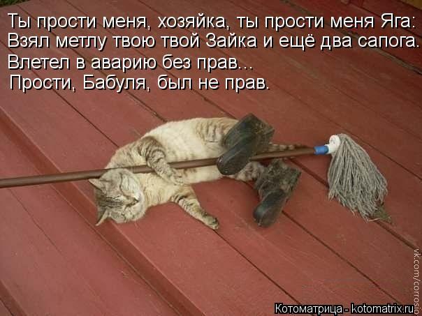 Котоматрица: Ты прости меня, хозяйка, ты прости меня Яга: Взял метлу твою твой Зайка и ещё два сапога. Влетел в аварию без прав... Прости, Бабуля, был не прав