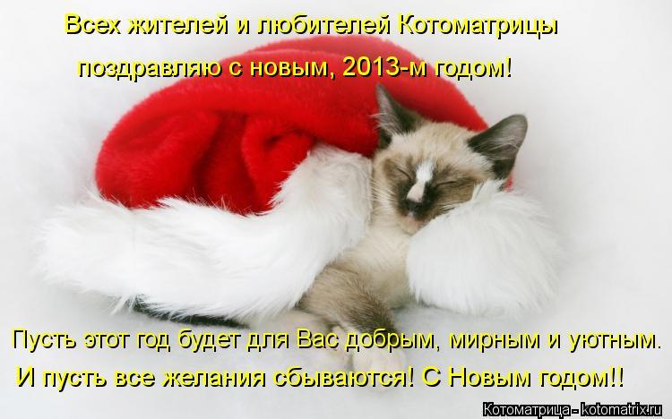 Котоматрица: Всех жителей и любителей Котоматрицы  поздравляю с новым, 2013-м годом! Пусть этот год будет для Вас добрым, мирным и уютным. И пусть все желани