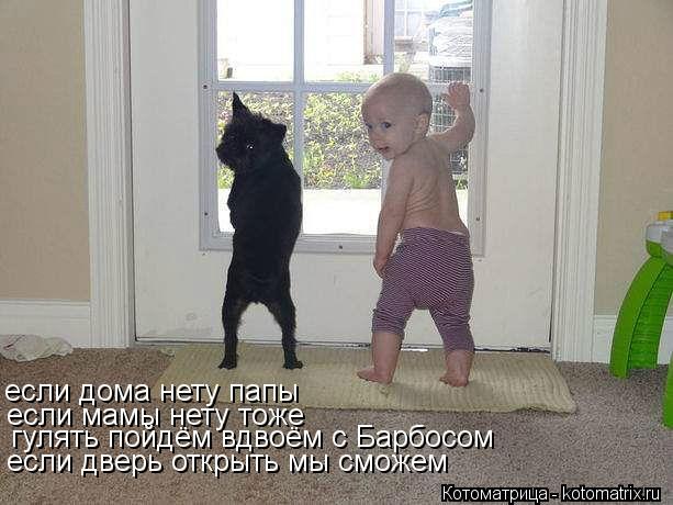 Котоматрица: если дома нету папы если мамы нету тоже гулять пойдём вдвоём с Барбосом если дверь открыть мы сможем