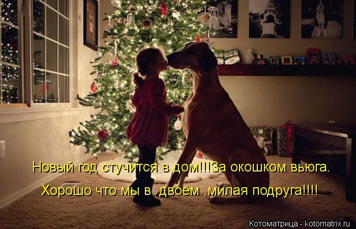 Котоматрица: Новый год стучится в дом!!!За окошком вьюга. Хорошо что мы в  двоём ,милая подруга!!!!