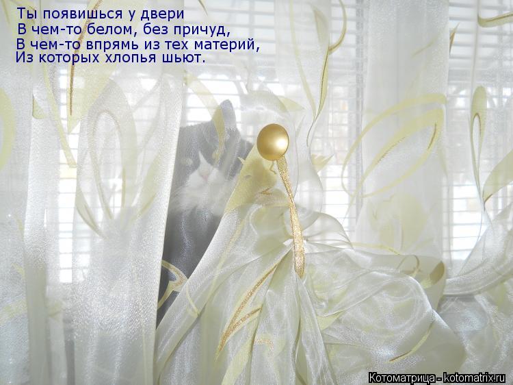 Котоматрица: Ты появишься у двери В чем-то белом, без причуд, В чем-то впрямь из тех материй, Из которых хлопья шьют.