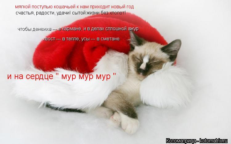 Котоматрица: мягкой поступью кошачьей к нам приходит новый год счастья, радости, удачи! сытой жизни без хлопот! хвост --- в тепле, усы --- в сметане чтобы ден