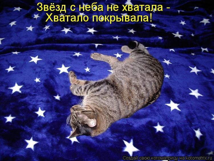 Котоматрица: Звёзд с неба не хватала -  Хватало покрывала!