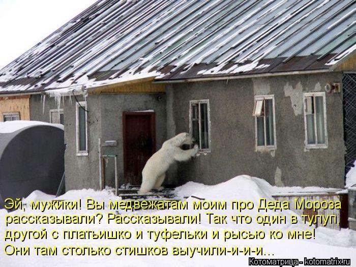 http://kotomatrix.ru/images/lolz/2013/01/03/kotomatritsa_A.jpg