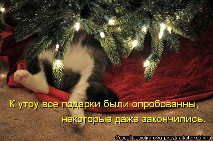 Котоматрица: К утру все подарки были опробованны,  некоторые даже закончились.