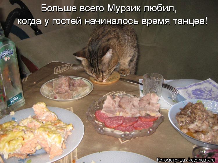 Котоматрица: Больше всего Мурзик любил, когда у гостей начиналось время танцев!
