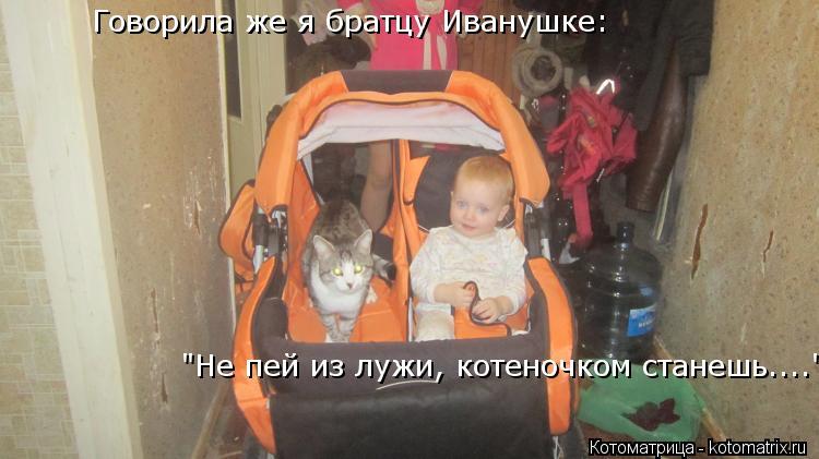 """Котоматрица: Говорила же я братцу Иванушке:  """"Не пей из лужи, котеночком станешь...."""""""