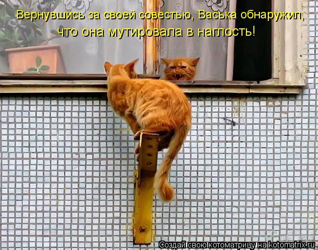 Котоматрица: Вернувшись за своей совестью, Васька обнаружил, что она мутировала в наглость!