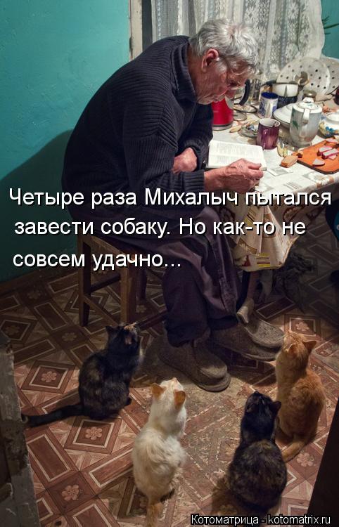 Котоматрица: Четыре раза Михалыч пытался  завести собаку. Но как-то не совсем удачно...