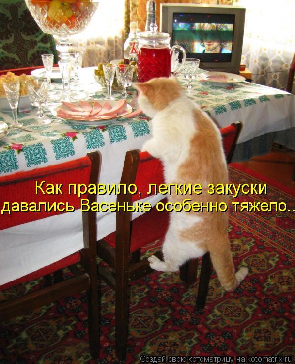 Котоматрица: Как правило, легкие закуски  давались Васеньке особенно тяжело...