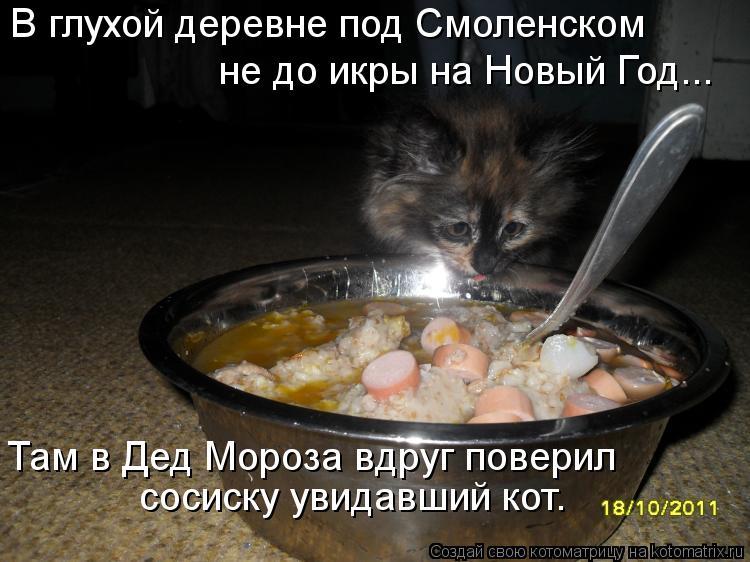 Котоматрица: В глухой деревне под Смоленском  не до икры на Новый Год... Там в Дед Мороза вдруг поверил  сосиску увидавший кот.