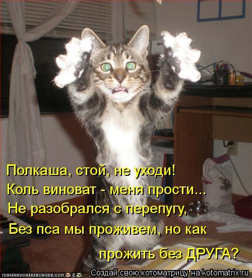 Котоматрица: Полкаша, стой, не уходи! Коль виноват - меня прости... Не разобрался с перепугу, Без пса мы проживем, но как  прожить без ДРУГА?