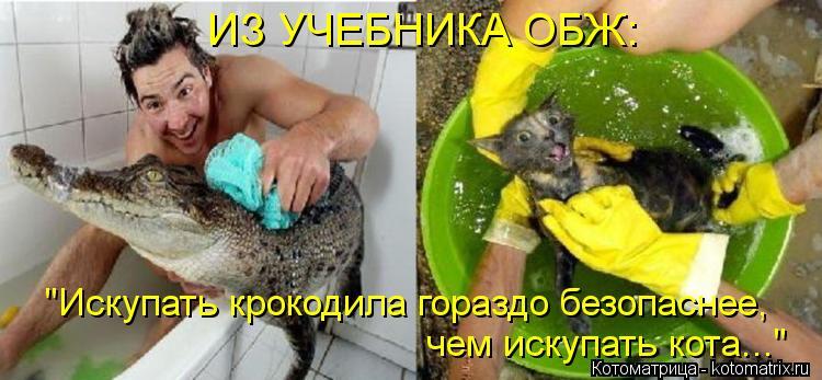 """Котоматрица: ИЗ УЧЕБНИКА ОБЖ: """"Искупать крокодила гораздо безопаснее, чем искупать кота..."""""""