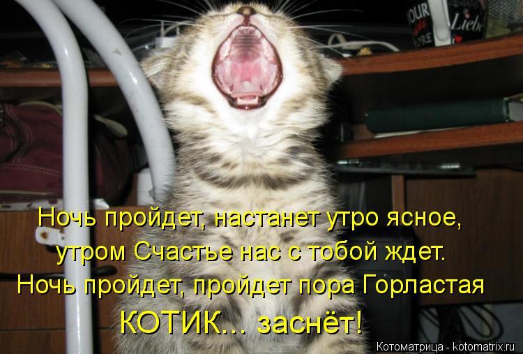 Котоматрица: Ночь пройдет, настанет утро ясное, Ночь пройдет, пройдет пора Горластая КОТИК... заснёт! утром Счастье нас с тобой ждет.