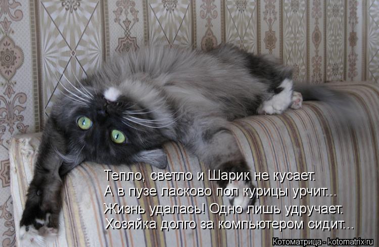 http://kotomatrix.ru/images/lolz/2013/01/10/kotomatritsa_yL.jpg
