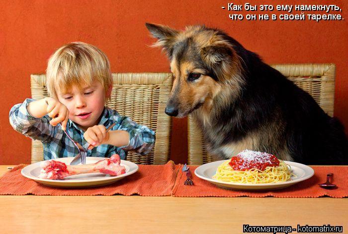 Котоматрица: - Как бы это ему намекнуть, что он не в своей тарелке.