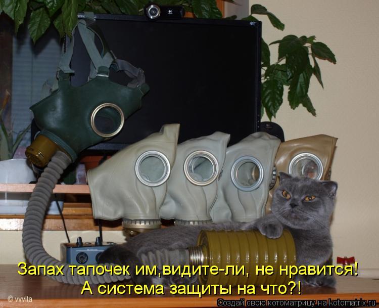 Котоматрица: Запах тапочек им,видите-ли, не нравится! А система защиты на что?!