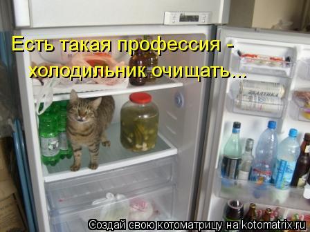 Котоматрица: Есть такая профессия - холодильник очищать...