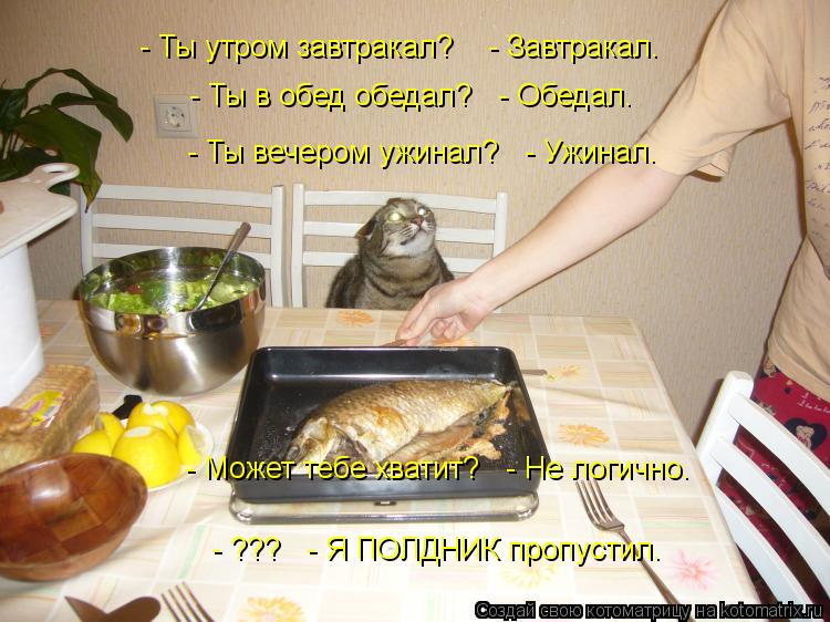 Котоматрица: - Ты утром завтракал?    - Завтракал. - Ты в обед обедал?   - Обедал. - Ты вечером ужинал?   - Ужинал. - Может тебе хватит?   - Не логично. - ???   - Я ПОЛДНИ
