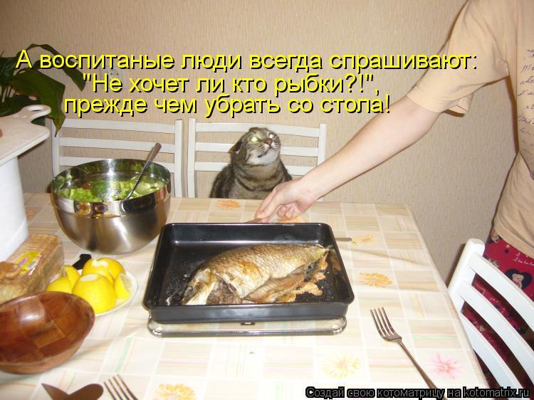 """Котоматрица: А воспитаные люди всегда спрашивают: """"Не хочет ли кто рыбки?!"""", прежде чем убрать со стола!"""