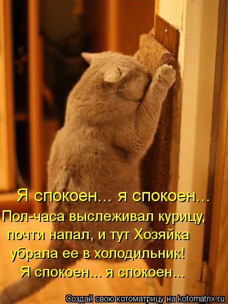Котоматрица: Я спокоен... я спокоен... Пол-часа выслеживал курицу, почти напал, и тут Хозяйка  убрала ее в холодильник! Я спокоен... я спокоен...