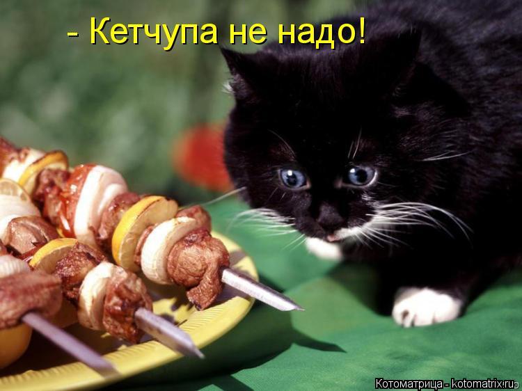 Котоматрица: - Кетчупа не надо!