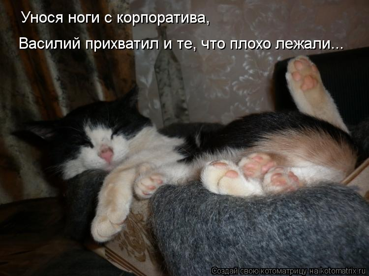 Котоматрица: Унося ноги с корпоратива,  Василий прихватил и те, что плохо лежали...
