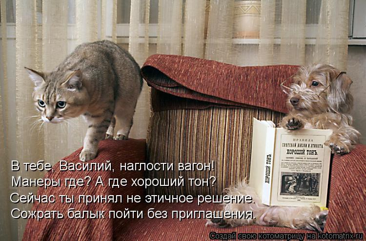 Котоматрица: В тебе, Василий, наглости вагон! Манеры где? А где хороший тон? Сейчас ты принял не этичное решение. Сожрать балык пойти без приглашения.