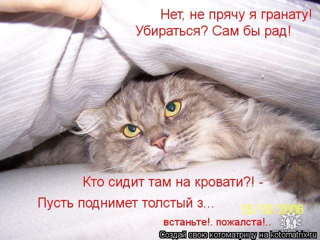 Котоматрица: Убираться? Сам бы рад! встаньте!. пожалста!.. Нет, не прячу я гранату!  Кто сидит там на кровати?! - Пусть поднимет толстый з...